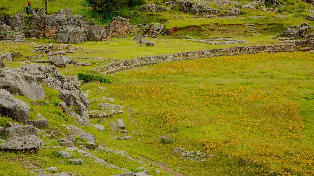 Sacsayhuamán ofreciendo vistas de paisajes y elementos del patrimonio