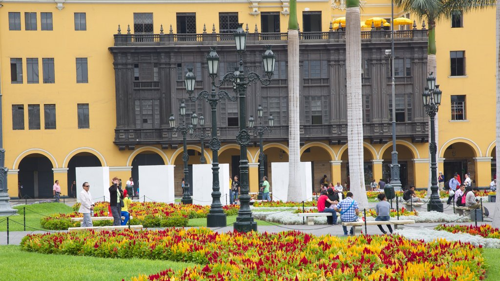 Plaza Mayor featuring flowers, wildflowers and a park