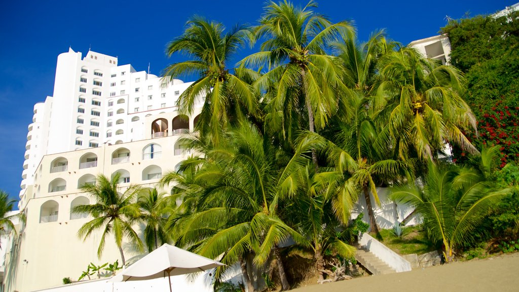 Playa La Audiencia which includes tropical scenes and a hotel