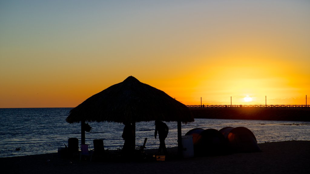 Playa Miramar featuring general coastal views, tropical scenes and a sunset