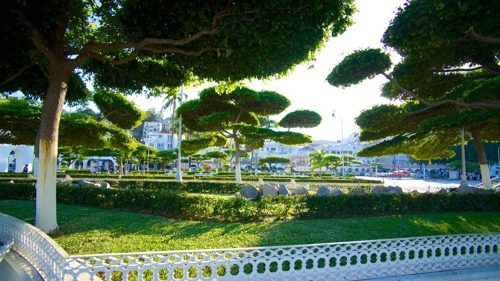 Zocalo which includes a garden