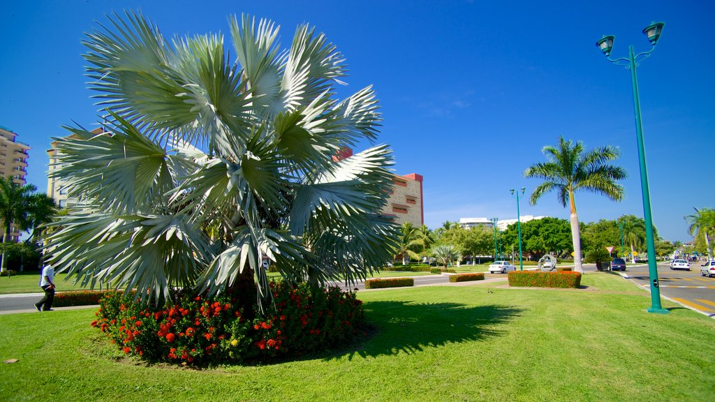 Ixtapa - Zihuatanejo which includes a garden and flowers