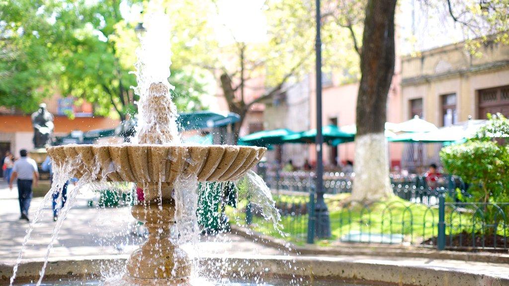 Rose Garden featuring a fountain and a garden