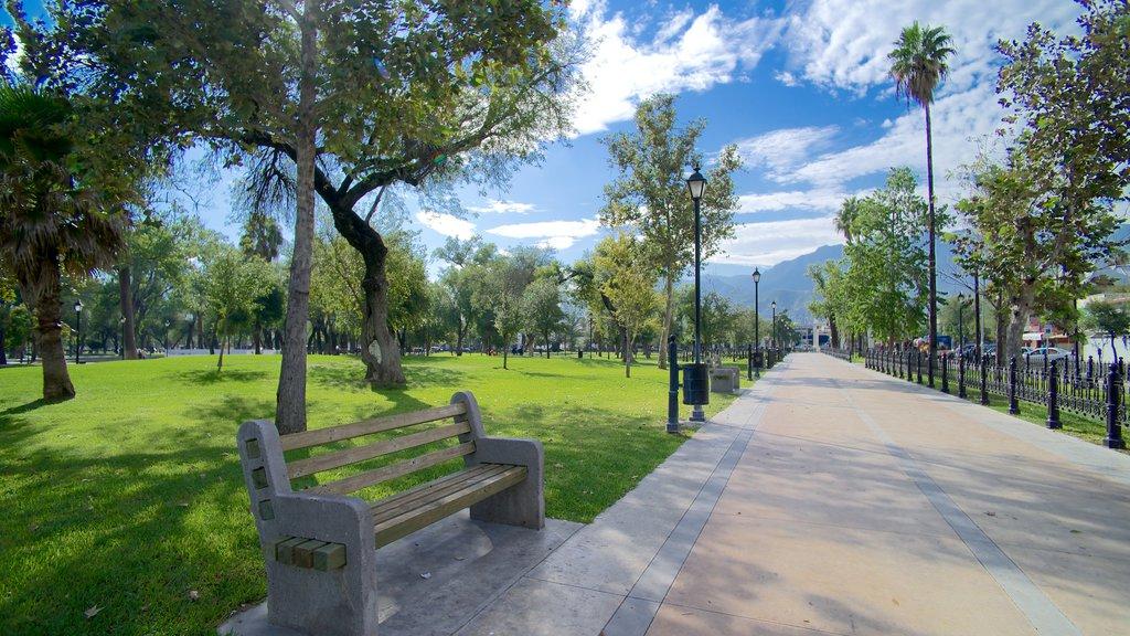 Alameda showing a park