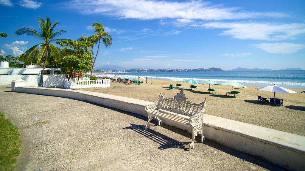 Playa Miramar which includes general coastal views and a beach