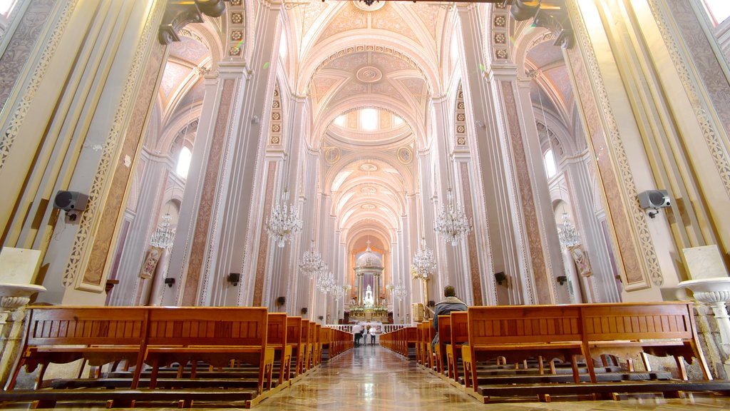 Morelia Cathedral showing a church or cathedral, interior views and religious aspects