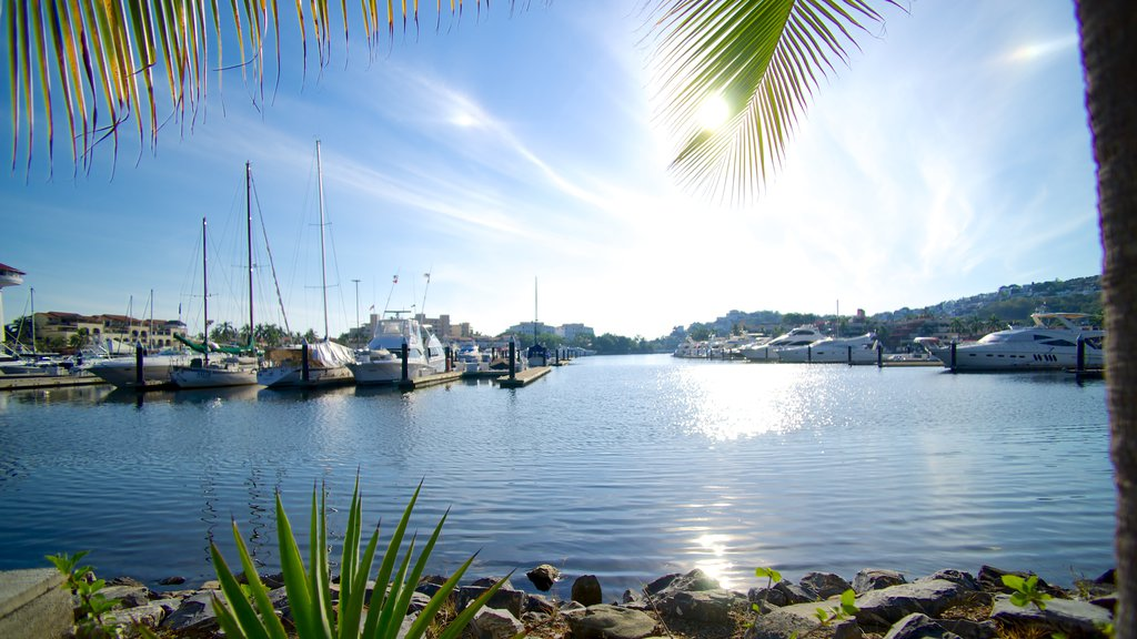 Marina Ixtapa showing a bay or harbor