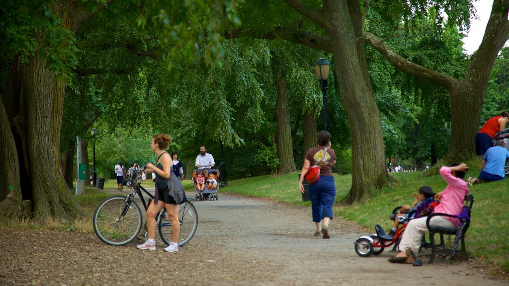 Prospect Park featuring a park and cycling as well as a large group of people