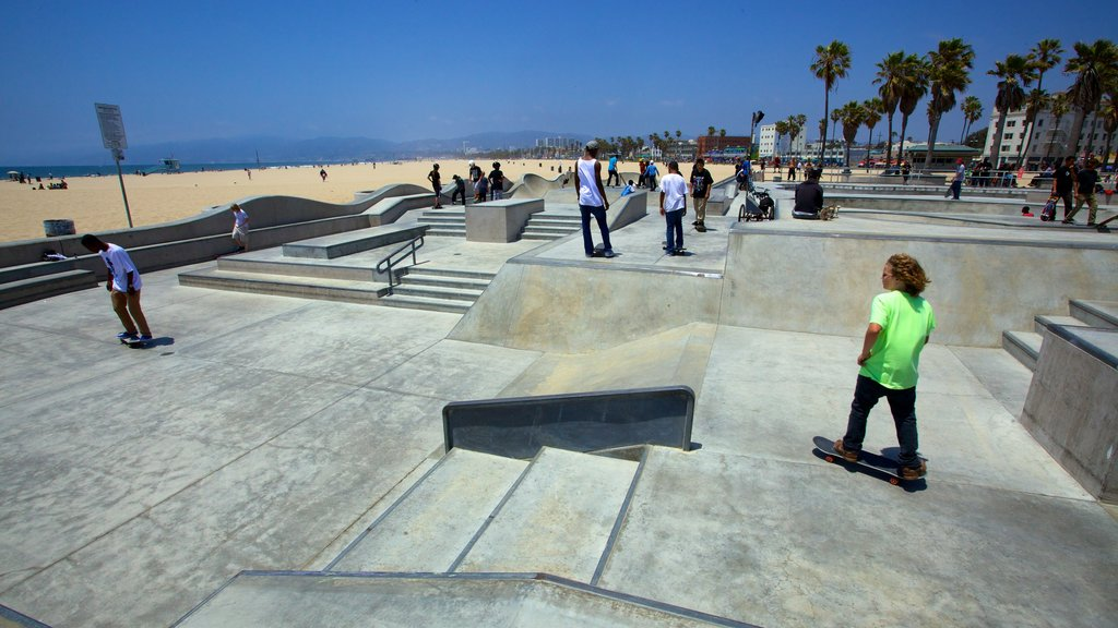 Venice Beach showing general coastal views as well as a large group of people