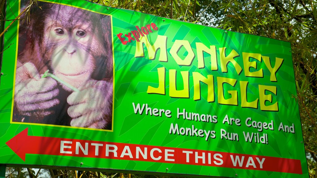 Monkey Jungle which includes zoo animals and signage