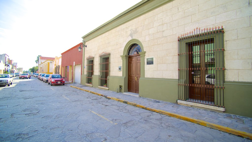 Barrio Antiguo showing a small town or village, heritage architecture and street scenes