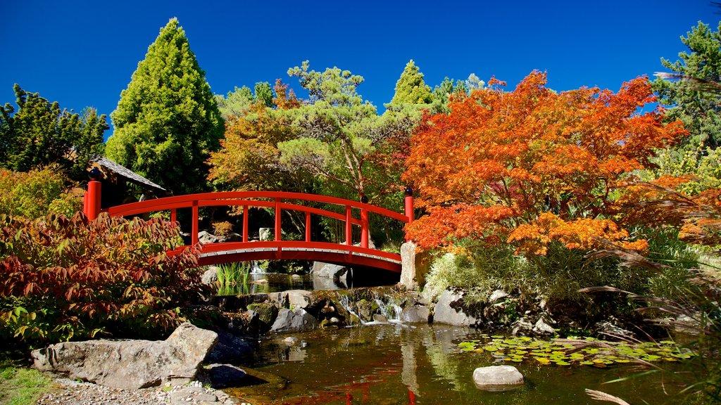 Real Jardín Botánico de Tasmania mostrando un estanque, un puente y un parque