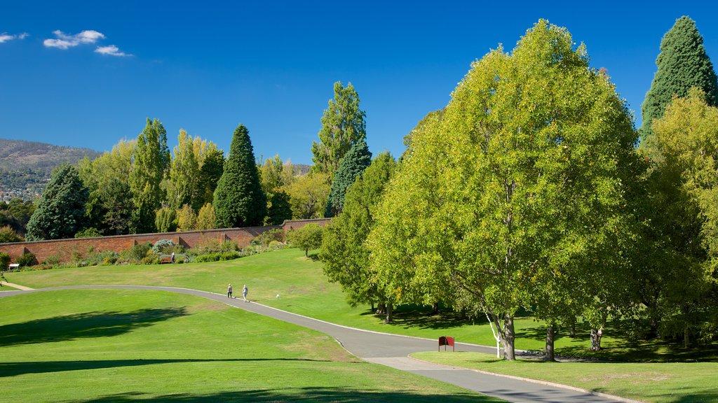 Real Jardín Botánico de Tasmania que incluye un parque y vistas de paisajes