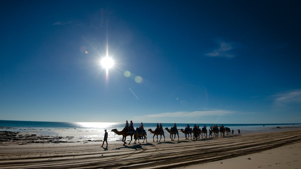 Cable Beach which includes land animals and a sandy beach