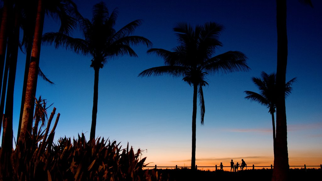 Cable Beach which includes tropical scenes and a sunset
