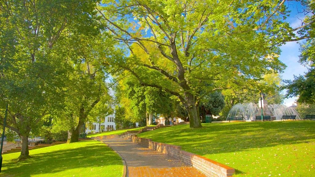 Franklin Square showing a park
