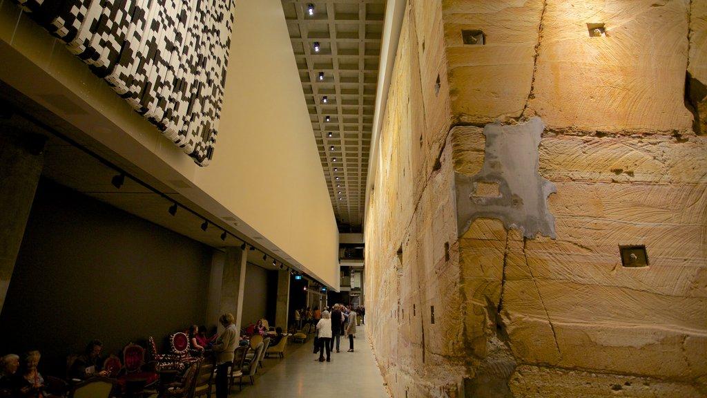 Museo de Arte Antiguo y Contemporáneo que incluye vistas interiores