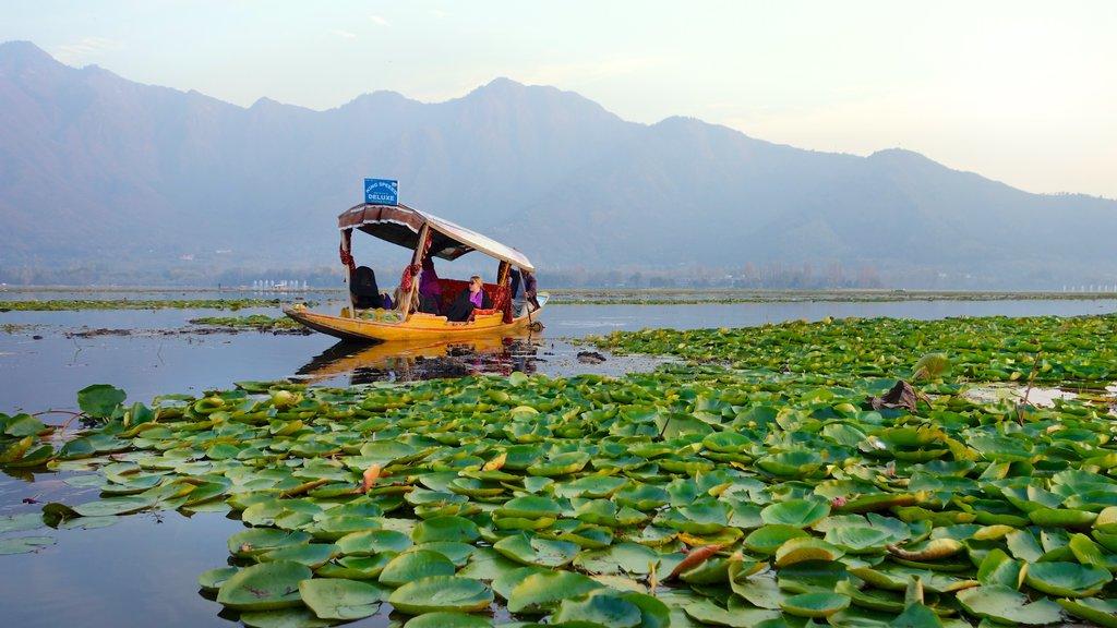 Jammu y Cachemira que incluye paseos en lancha, un lago o abrevadero y vistas de paisajes
