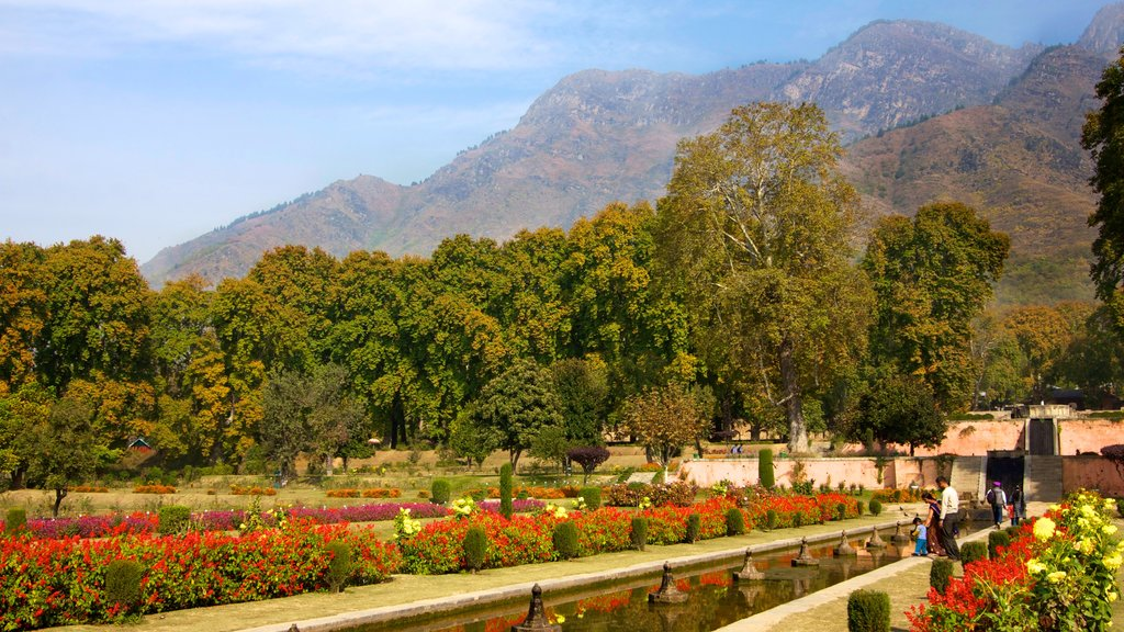 Jammu and Kashmir which includes a garden