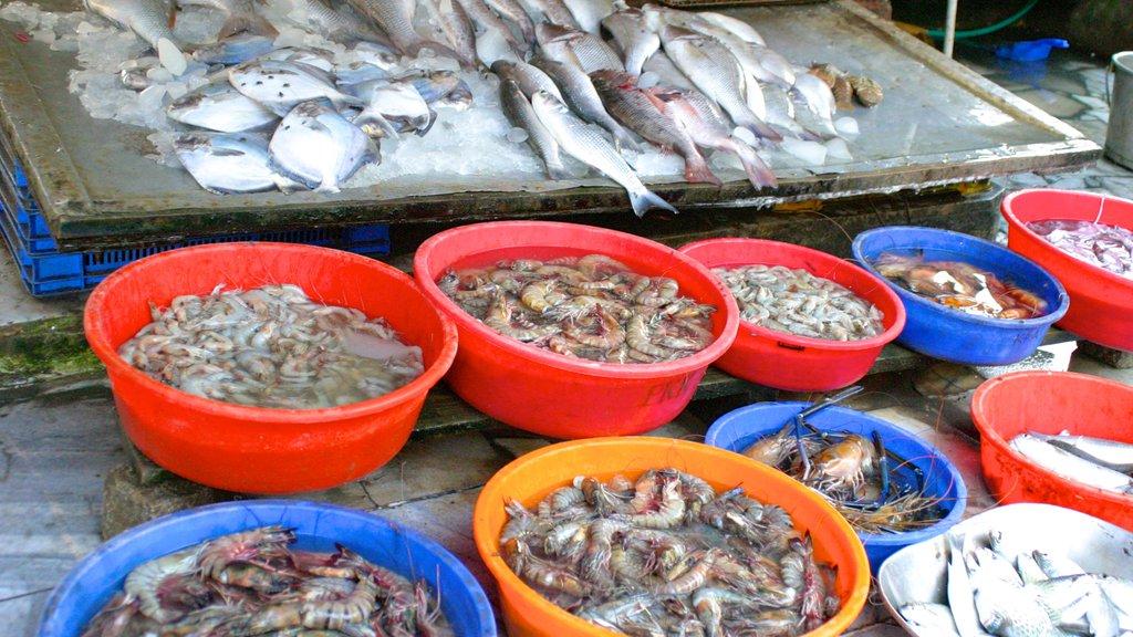 Cochin que incluye comida y mercados