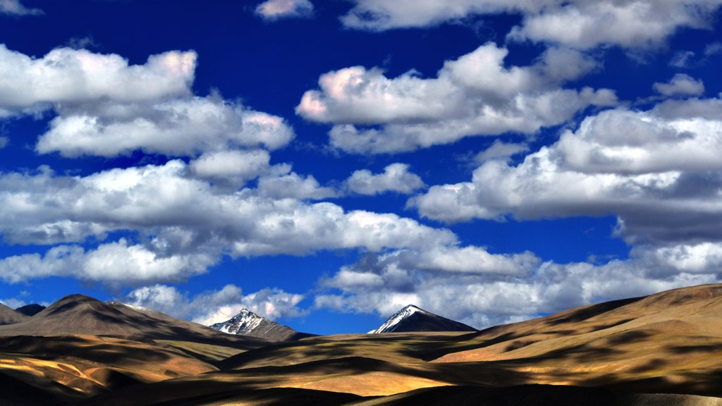 Leh showing mountains and landscape views