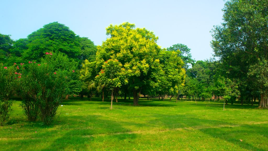 Humayun\'s Tomb featuring a garden