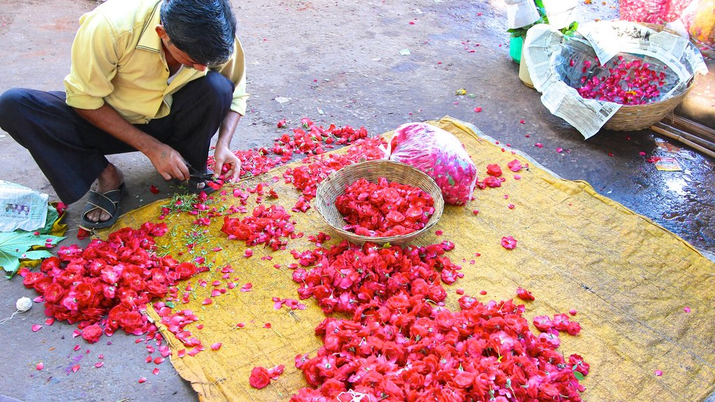 Johri Bazaar showing markets and flowers as well as an individual male
