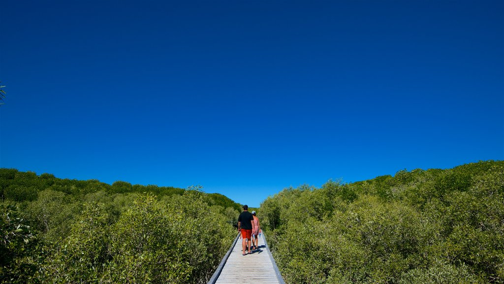 The Kimberley which includes landscape views and hiking or walking