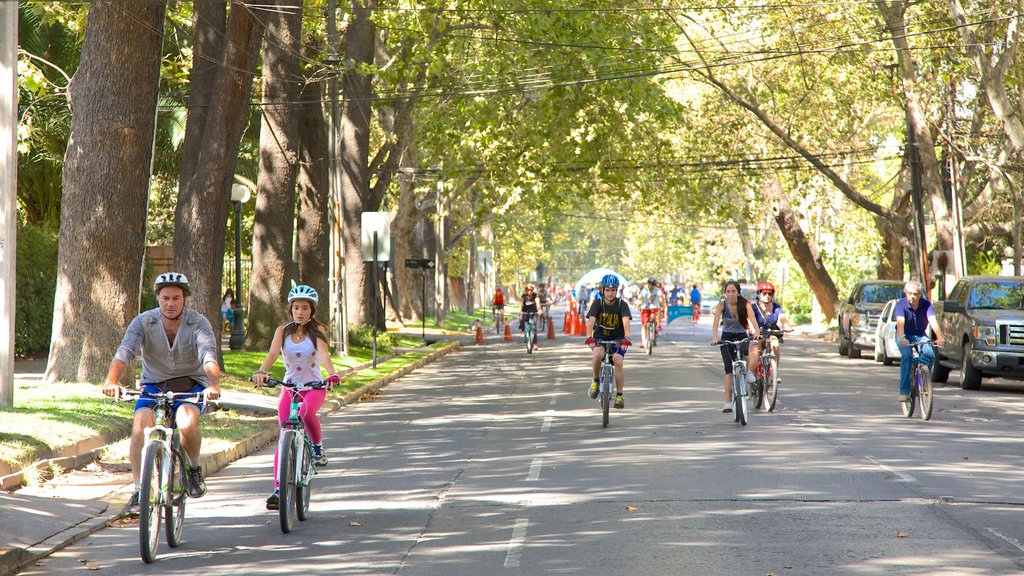 Providencia featuring cycling, a sporting event and street scenes