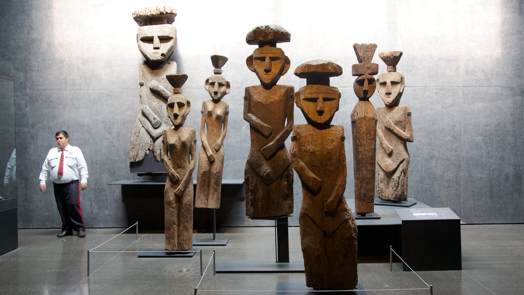 Museum of Chilean Precolombian Art showing art and interior views as well as an individual male