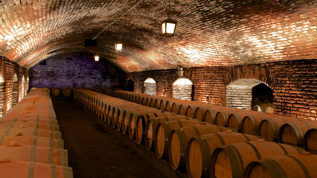 Concha Y Toro Winery featuring interior views
