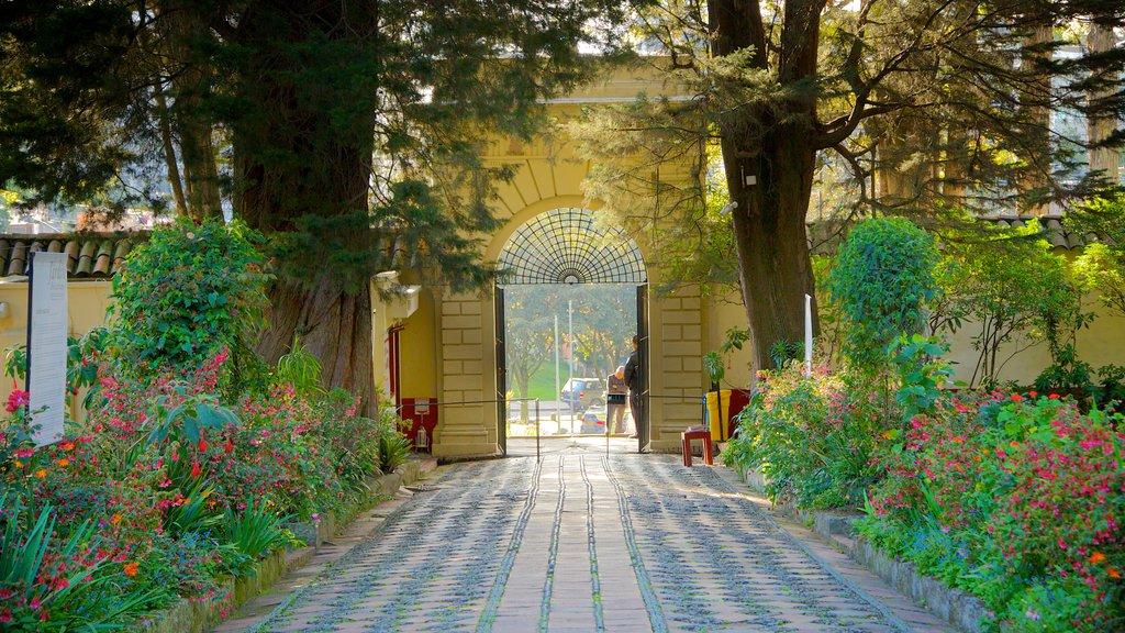 Casa Museo Quinta de Bolivar featuring flowers and a park