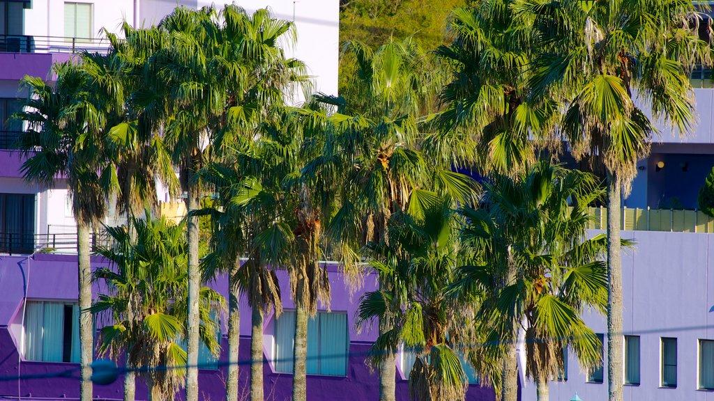 Toi Beach featuring tropical scenes and a coastal town