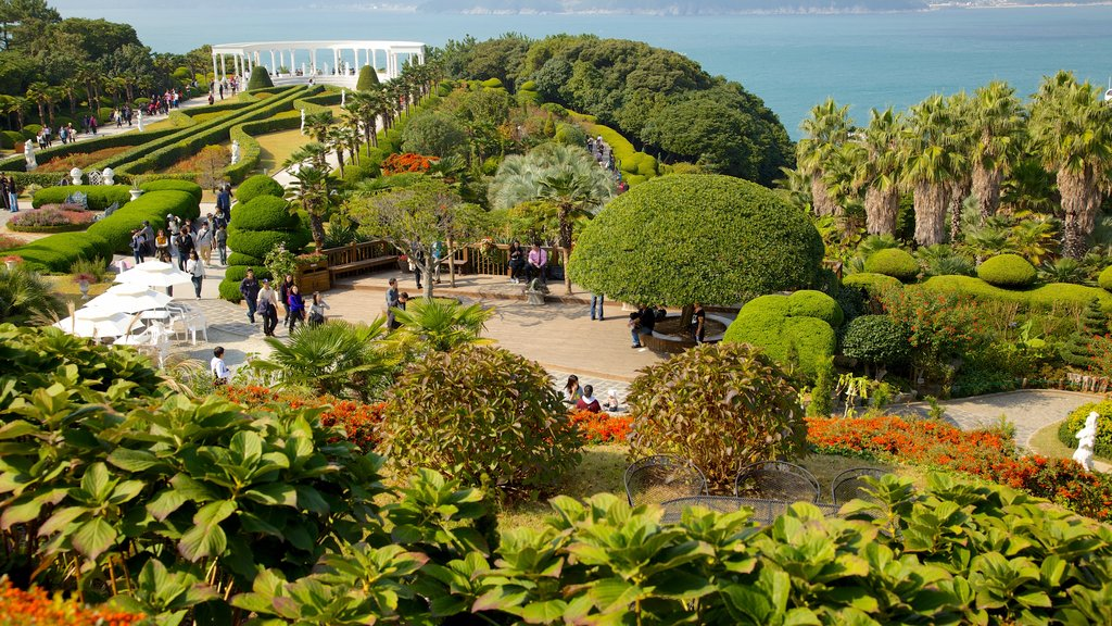 Oedo Paradise Island which includes tropical scenes, a park and general coastal views
