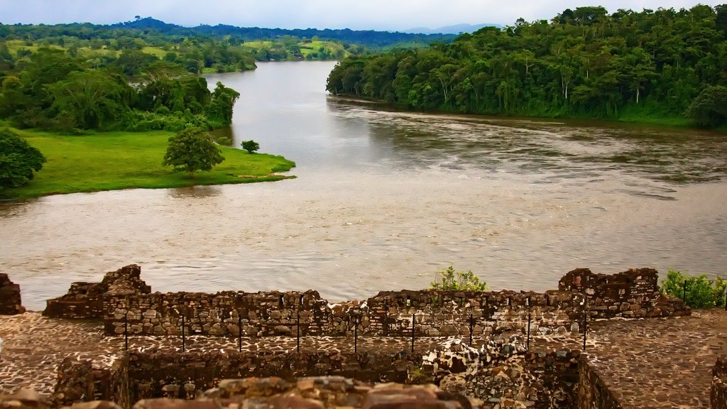 Rio San Juan which includes a river or creek and forest scenes