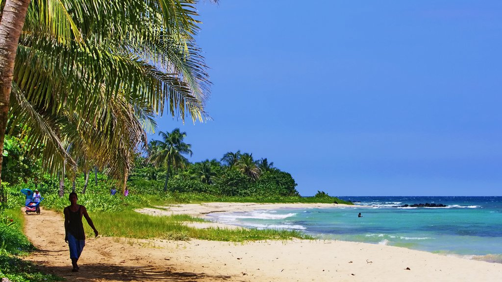 Corn Island featuring tropical scenes and a beach as well as an individual male