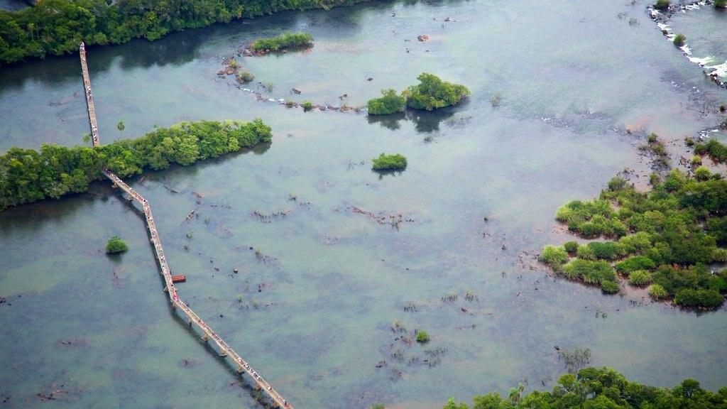 Foz do Iguaçu caracterizando paisagem e cenas de floresta