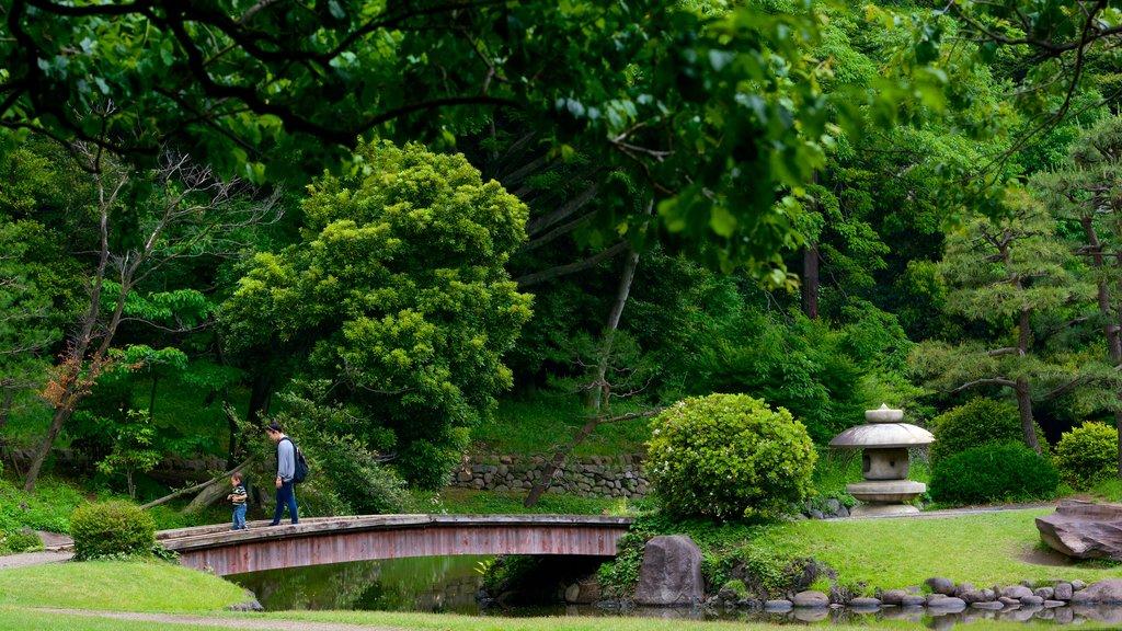 Shinjuku Gyoen National Garden featuring a park, forest scenes and a bridge
