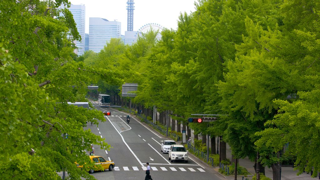Yamashita Park showing street scenes and a city