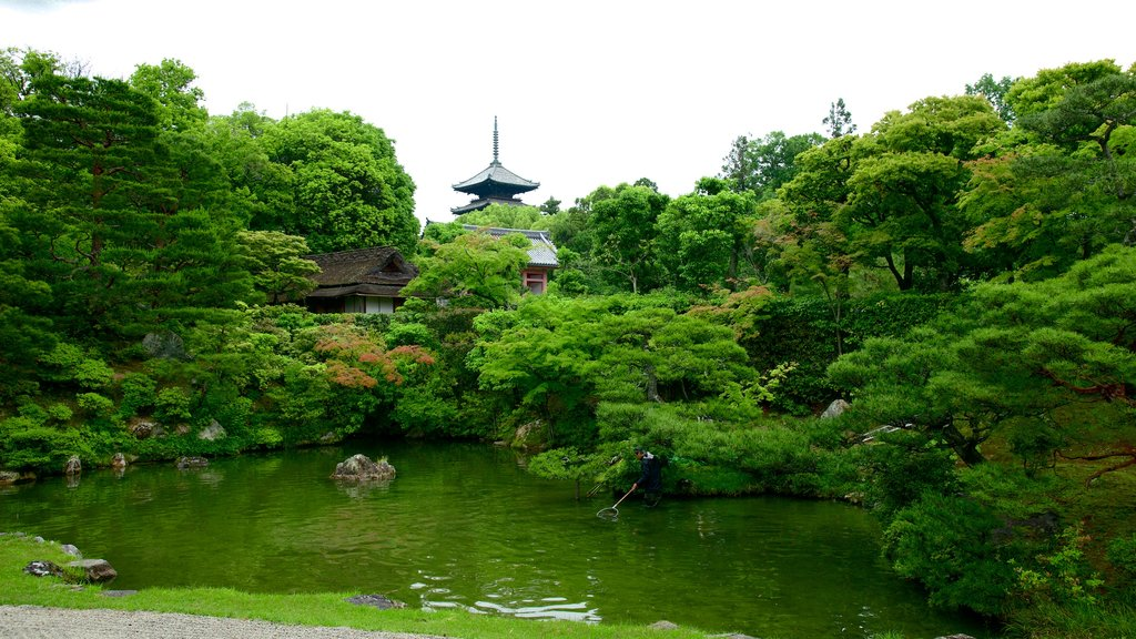 Ninnaji Temple which includes religious elements, a park and a pond
