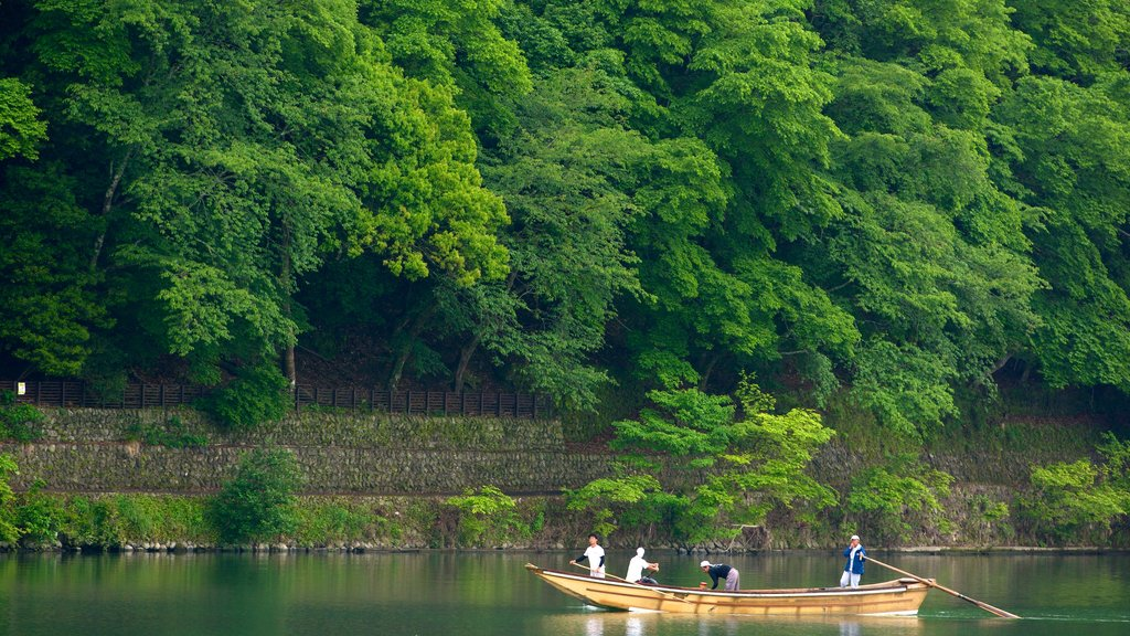 Arashiyama Monkey Park featuring a river or creek, forests and boating