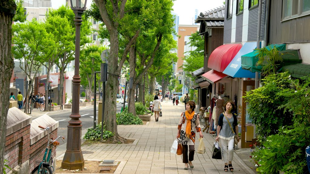 Kitano featuring a city, shopping and street scenes