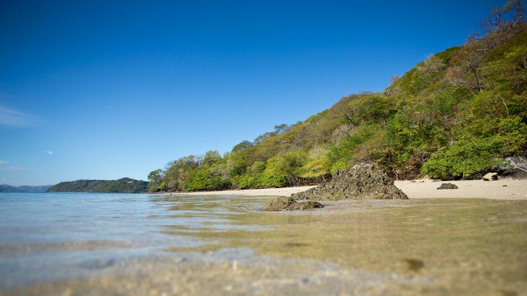 Guanacaste - Costa del Pacífico norte que incluye una playa y vistas de paisajes