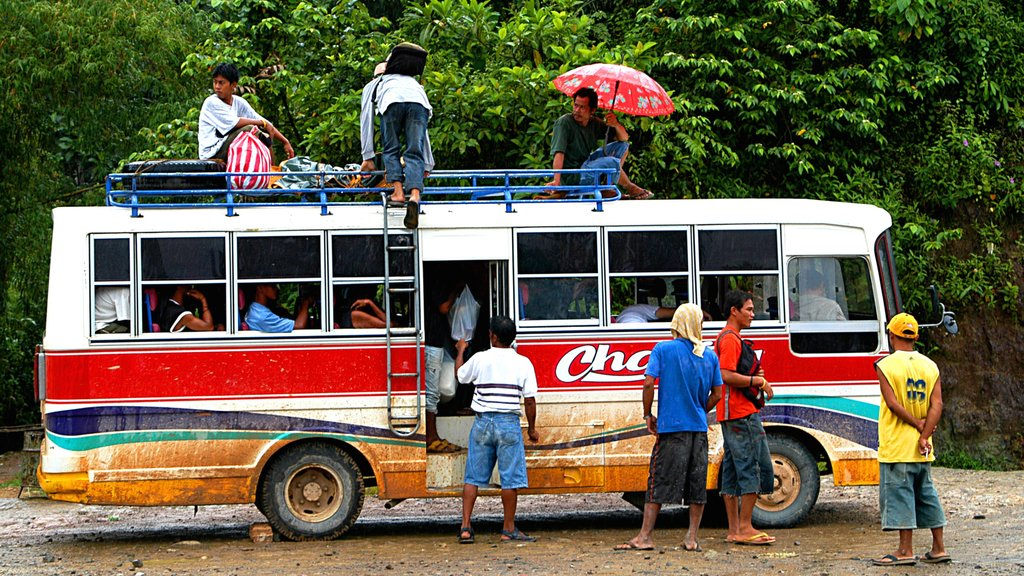 Palawan showing touring as well as a large group of people