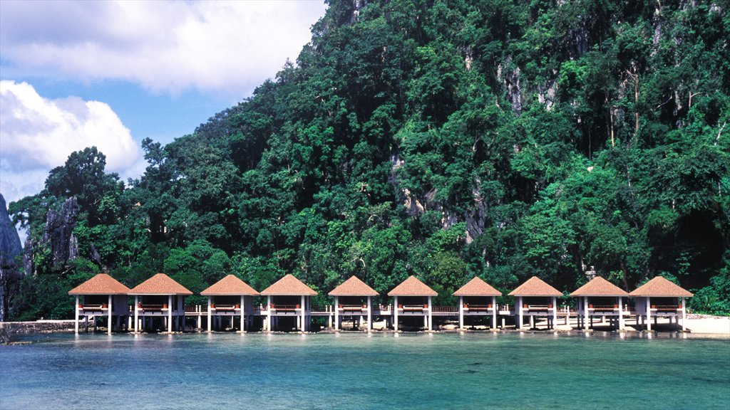 Palawan showing forests, landscape views and a beach