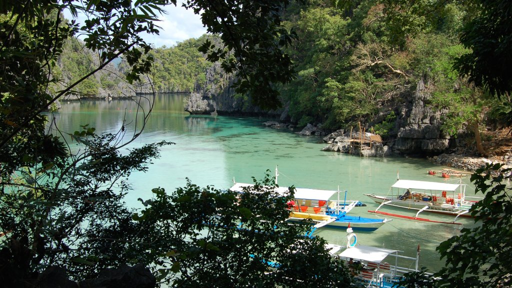 Palawan showing landscape views, boating and forest scenes