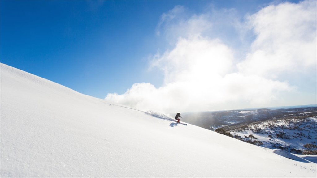 Snowy Mountains showing snow and snow skiing