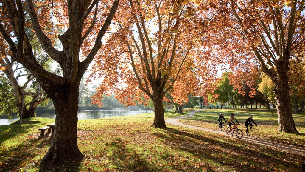 Albury which includes landscape views, a park and cycling