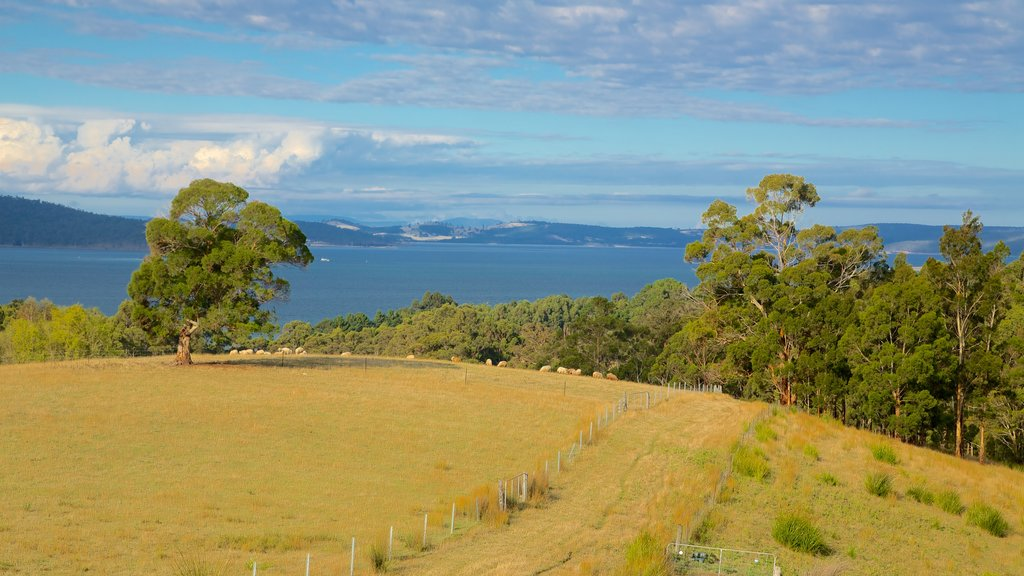 Hobart featuring farmland and landscape views