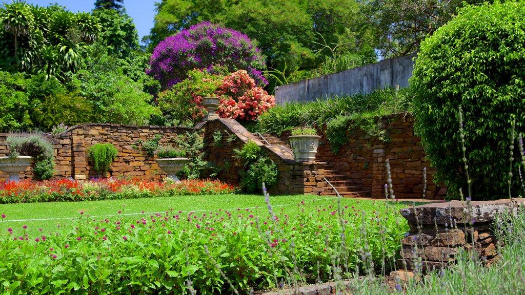 حديقة كوازولو ناتال الرائعة